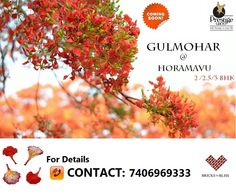 Prestige group is coming up with its pre-launch project Gulmohar near Horamavu Road, Bangalore. Book your dream homes that suits your budget and dwell in the subrub of Horamavu that connects Horamavu, Kalkere main road and Rammurthy Nagar (Bangalore North)