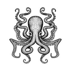Giant Octopus in rough woodcut style Octopus Drawing, Octopus Tattoo Design, Octopus Tattoos, Octopus Artwork, Octopus Images, Octopus Illustration, Tattoo Stencils, Sea Monsters, Monster Art