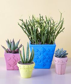 Balsa wood shapes give simple planters a unique Aztec-inspired vibe. Complete the look with matte shades of yellow, blue, and pink.