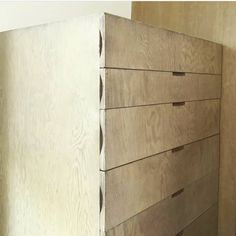 Rudolph Michael Schindler's drawers