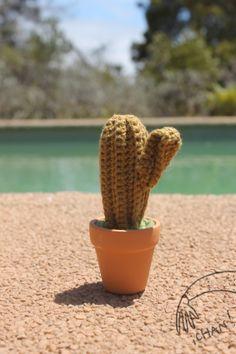 cactus amigurumi tejido a crochet