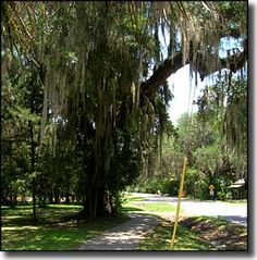 Old Florida Heritage Highway | Florida Scenic Byways