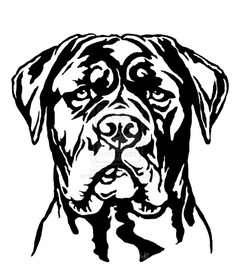 private illustrations by WSHutchison on deviantART