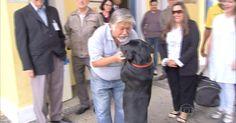 Dono de cachorro que fazia 'vigília' em porta de hospital recebe alta