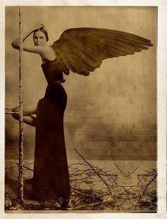 art by Giovanni Gastel Jeanette Winterson, Seraph Angel, Willy Ronis, Spiritus, Markus Zusak, Guy Aroch, Angels And Demons, William Blake, Illustrations