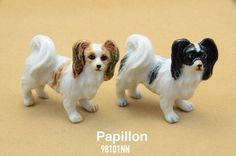 98101NN Papillon Dog