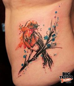 result for robin tattoo Robin Bird Tattoos, Robin Tattoo, Little Bird Tattoos, Bird Tattoo Back, Dragonfly Tattoo, Flower Tattoos, Butterfly Tattoos, Sarah Tattoo, Bird Tattoo Men