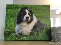 (Another) Fantastic giveaway for a photo canvas print from Canvas Factory! - Decorology
