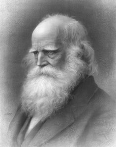 William Cullen Bryant beard type - Van Winkle with a 43 gravity (UPI) rating from Poets Ranked by Beard Weights | Brain Pickings