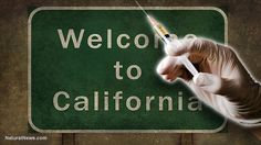 California's SB277 mandatory vaccination bill passes Senate committee after votes rigged, public testimony silenced