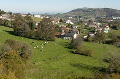 Precioso el #CaminoPrimitivo a Santiago de Compostela.  Recórrelo con www.caminodesantiagoreservas.com.