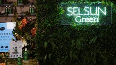 Greenery Wall is perfect for your product launch Wall Backdrops, Be Perfect, Greenery, Product Launch, Neon Signs, Flowers, Florals, Flower, Blossoms