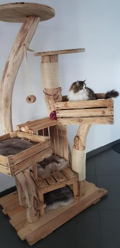 Zufriedene Schnurrer - Naturholzbäume für Katzen y manualidades Cat Friendly Plants, Diy Cat Tower, Cat Climbing Tree, Cat Sitter, Wooden Tree, Cat Room, Cat Condo, Cat Scratching, Cat Furniture