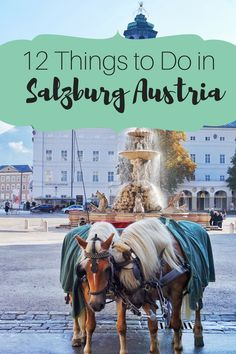I didn't mean to fall in love with Salzburg, but I did! Here's why Salzburg is my favorite city in Austria. There are so many amazing things to do! Backpacking Europe, Europe Travel Tips, Travel Abroad, Places To Travel, Italy Travel, Travel Guides, Visit Austria, Austria Travel, Germany Travel