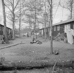 View of Block 7 in Jerome War Relocation Center, Arkansas, 16 Nov 1942. (US National Archives)