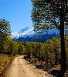 Parque Nacional Tierra del Fuego. Argentina