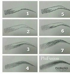 pelo a pelo (Eyebrow Makeup Step) - Microblading Eyebrows Sketch, How To Draw Eyebrows, Drawing Eyebrows, Makeup Drawing, Makeup Art, Pencil Art Drawings, Art Drawings Sketches, Drawing Techniques, Drawing Tips