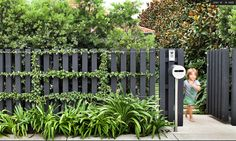 simple front fence: black fence w espalier Backyard Fences, Garden Fencing, Backyard Landscaping, Pool Fence, Landscaping Ideas, Patio Fence, Farm Fence, Garden Beds, Grey Fences