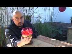 Cómo hacer Pasta cicatrizante GRATIS para tu bonsai - YouTube