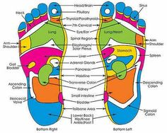 Does Pressure Point Therapy, Reflexology Really Work? (Guide) Does Pressure Point Therapy, Reflexology Really Work? Foot Pressure Points, Pressure Point Therapy, Foot Chart, Reflexology Massage, Lymph Massage, Mudras, Hand Massage, Healing Hands, Physical Therapy