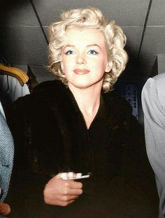 Marilyn 1954
