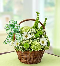 St Patrick's Day Charm basket filled with fresh green and white flowers. Order St Patricks Day Charm St Patricks Fresh Flowers from FANCY PETALS - Defiance, OH Florist & Flower Shop. Small Flower Design, Small Flowers, Fresh Flowers, Spring Flowers, Flower Designs, White Flowers, Floral Design, Green Carnation, Green Basket
