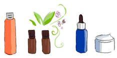 Dossier thématique - Les différents extraits de plantes - Aroma-Zone