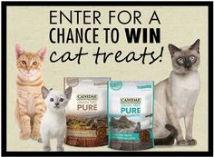 Do you have a cat? If you do, this is the instant win giveaway for you. CANIDAE is back with another chance to win cat treats on their Facebook page. Canidae cat treats are grain-free …