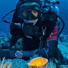 Dive Watches in Depth: A Dive Watch FAQ