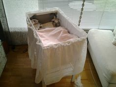 Baby box bed