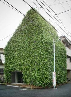 Green architecture!