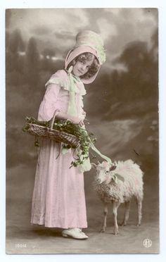 Beautiful Edwardian Girl with Sheep