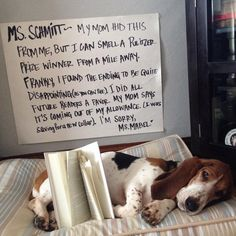 And when this dedicated scholar disappointed her local librarian. | 21 Times Basset Hounds Were Just Really Dorky