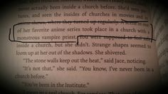 Had a fangirl moment, was reading The Mortal Instruments: City Of Bones and came across this!!!!! Sound Familiar?