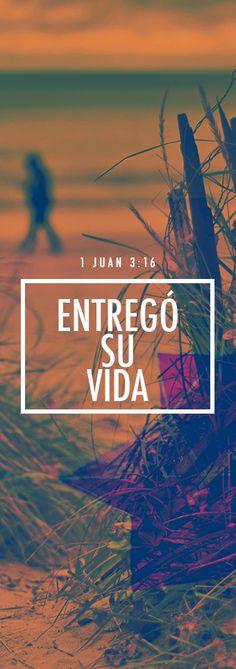 1 Juan 3:16 En esto conocemos lo que es el amor: en que Jesucristo entregó su vida por nosotros. Así también nosotros debemos entregar la vida por nuestros hermanos.