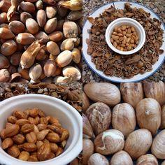 Making honeyed Hazelnuts from foraged cobnuts Almond, Stuffed Mushrooms, Vegetables, Recipes, Food, Stuff Mushrooms, Essen, Almond Joy, Eten