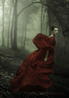 Red Riding Hood and the big bad wolf. Fantasy Photography, Fine Art Photography, Fashion Photography, Charles Perrault, Big Bad Wolf, Dark Beauty, Model Photographers, Red Riding Hood, Little Red
