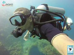 Paket 2x diving USAT Liberty Wreck di Tulamben Bali untuk non certified divers, tanpa perlu pengalaman by Bali Diving