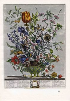 This vintage art print of Robert Furber's 1730's engraving of February's Blooming Flowers was carefully rescued from a 1940s botanical book along with the eleven other historically accurate prints of Furber's monthly blooming flower arrangements. Framed, this would make a meaningful gift for a wedding or anniversary...or in the birth month for a newborn. At AngelGrace on Etsy, $15 each.