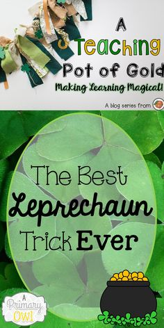 You'll love this easy idea for  a leprechaun trick in your classroom!
