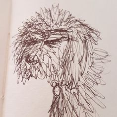 Found this old sketch of my now deceased pet Curly. Do you draw your pet sometimes? #sketch_daily #drawing #artoftheday #love #cute #curly #poodle #dog #inktober #sketch