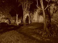 El jardin de noche