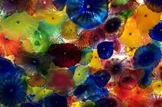 Chihuly Flowers