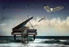 piyano--dersi---0543-232-91-22---1.jpg (800×552)