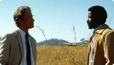 Grido di libertà buon film civile, diretto da Attenborough in modo robusto (anche se fin troppo tradizionale).