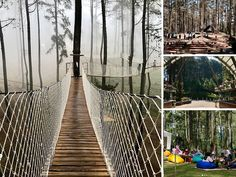 16 Best Wisata Alam Cikole Images Lembang Bandung Jungle
