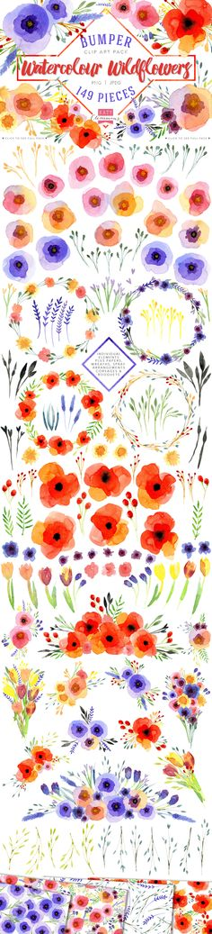 Watercolour Wildflowers clip art by Katy Clemmans on Creative Market