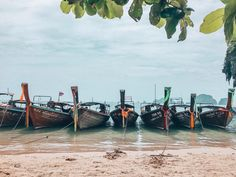 Long Boats in Krabi, Thailand, Koh Phi Phi, Riley Beach | Beaches, Vacation, Southeast Asia. Instagram Photograph by @finding.jules