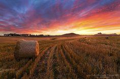 Northern Suburbs sunset