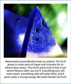 Moonmelon fruit. Looks tasty!! Would love to try it!